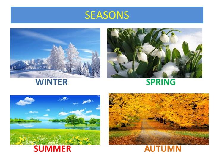 SEASONS      WINTER SPRING   SUMMER AUTUMN