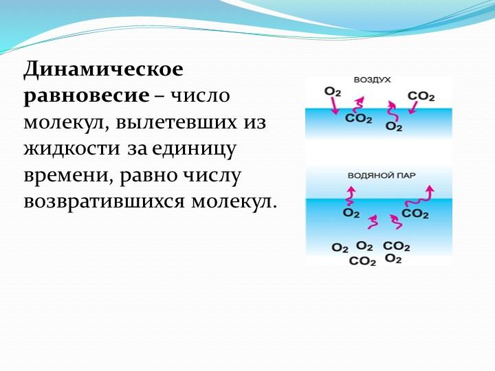 Динамическое равновесие – число молекул, вылетевших из жидкости за единицу вр...