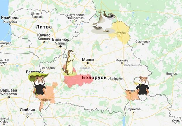 http://ptushki.org/wp-content/uploads/684382/Karta-supergryzunou-800.jpg