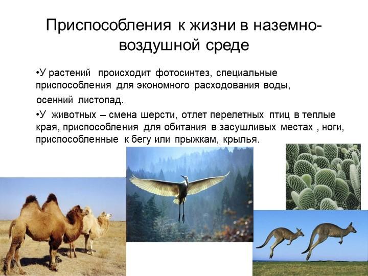 Приспособления к жизни в наземно-воздушной средеУ растений  происходит фотоси...