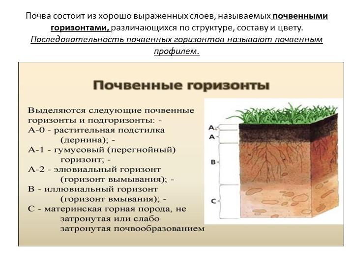 Почва состоит из хорошо выраженных слоев, называемых почвенными горизонтами,...