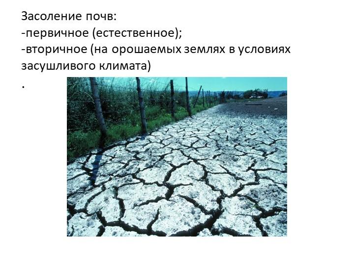 Засоление почв:-первичное (естественное);-вторичное (на орошаемых землях в...