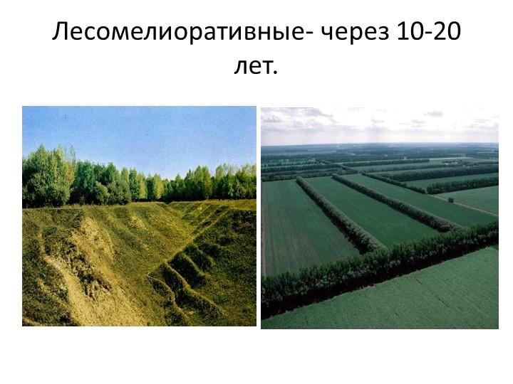 Лесомелиоративные- через 10-20 лет.