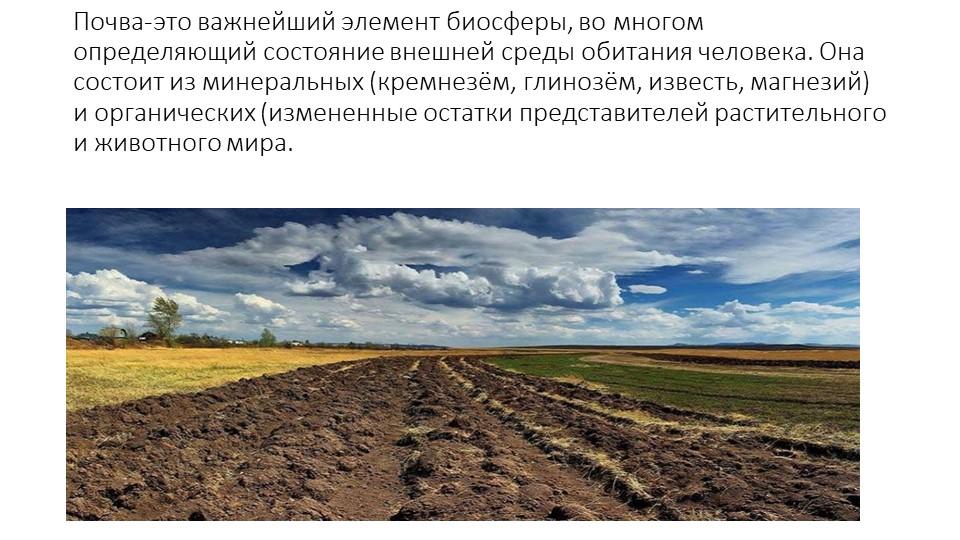 Почва-это важнейший элемент биосферы, во многом определяющий состояние внешне...