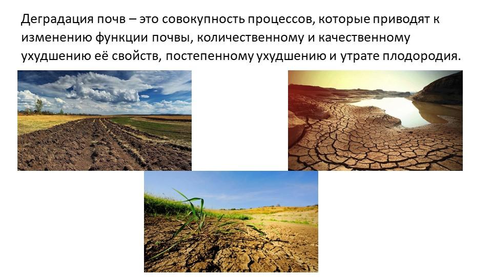 Деградация почв – это совокупность процессов, которые приводят к изменению фу...