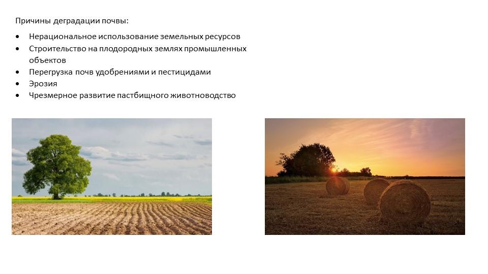 Причины деградации почвы:Нерациональное использование земельных ресурсовСтр...