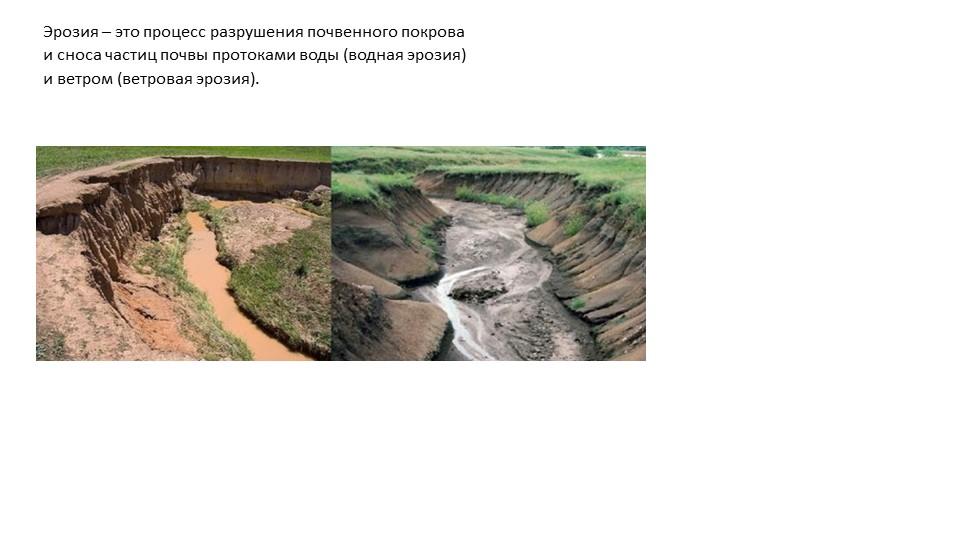 Эрозия – это процесс разрушения почвенного покрова и сноса частиц почвы прото...