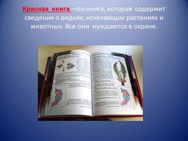 Красная  книга –это книга, которая  содержит сведения о редких, исчезающих ра...