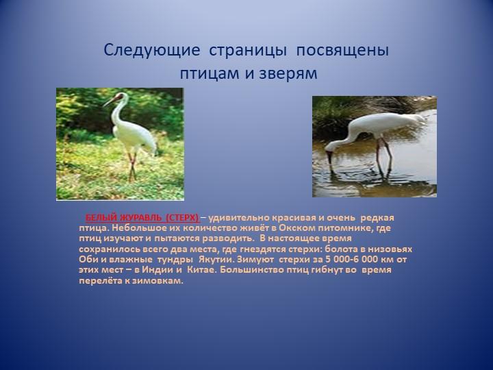 Следующие  страницы  посвящены птицам и зверям   БЕЛЫЙ ЖУРАВЛЬ (СТЕРХ) – уди...