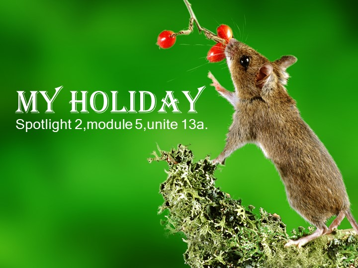 My holidaySpotlight 2,module 5,unite 13a.