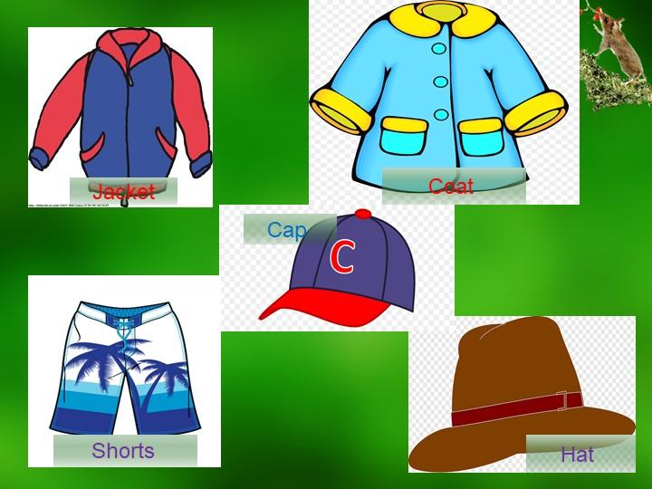 JacketCoat Cap Shorts Hat