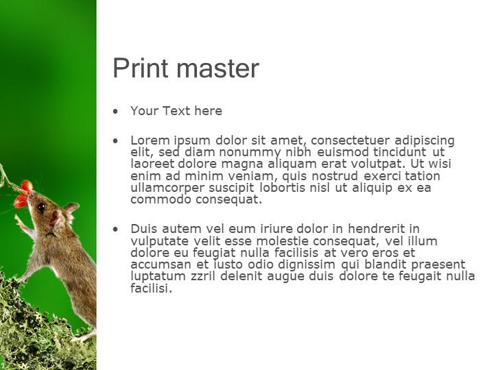 Print masterYour Text hereLorem ipsum dolor sit amet, consectetuer adipisci...
