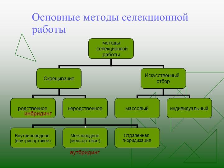 Основные методы селекционной работыинбридингаутбридинг