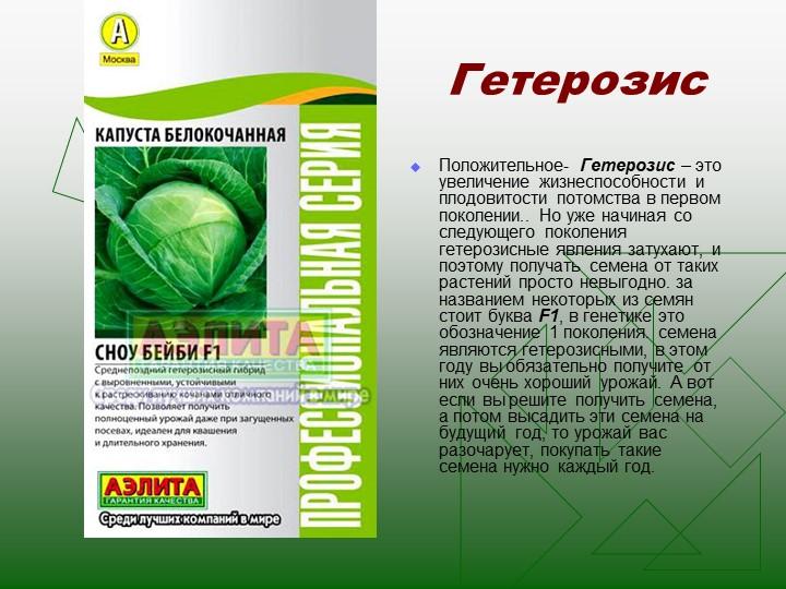 ГетерозисПоложительное- Гетерозис – это увеличение жизнеспособности и плодови...