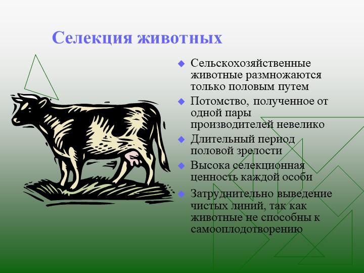 Селекция животныхСельскохозяйственные животные размножаются только половым пу...