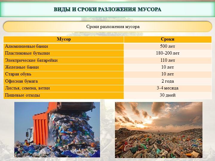 Виды и сроки разложения мусораСроки разложения мусора