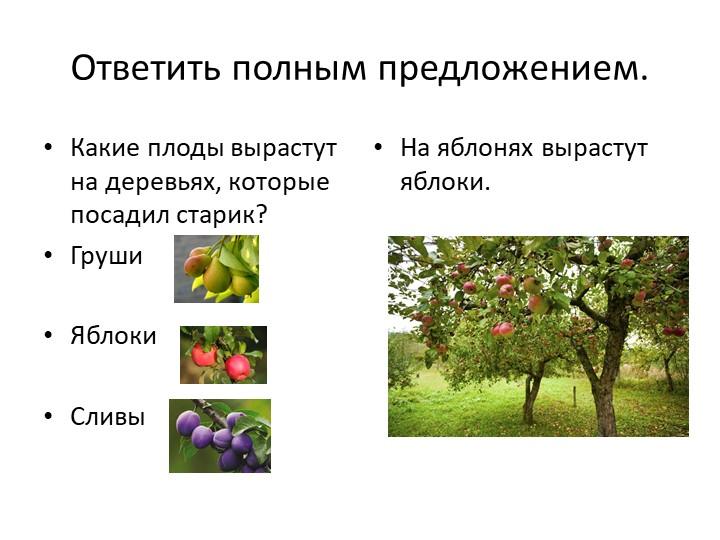 Ответить полным предложением.Какие плоды вырастут на деревьях, которые посади...