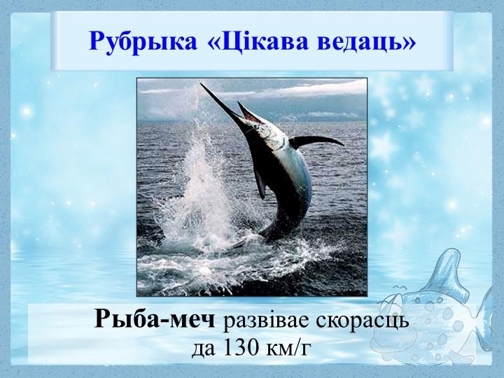 Рыба-меч развівае скорасць да 130 км/г Рубрыка «Цікава ведаць»