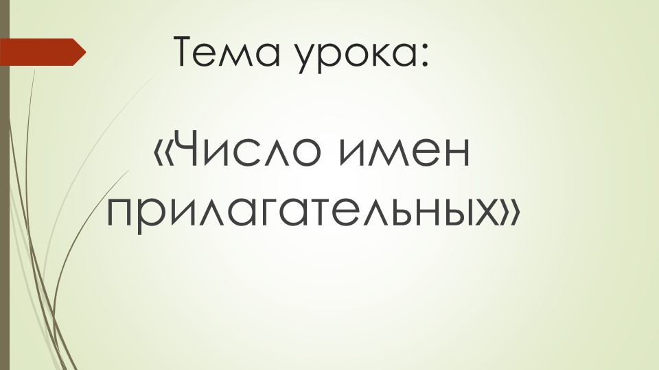 Тема урока:«Число имен прилагательных»