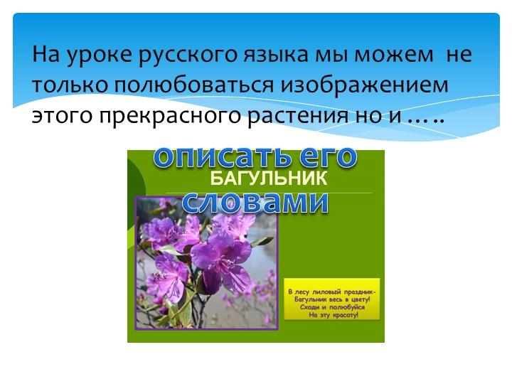 На уроке русского языка мы можем  не только полюбоваться изображением этого п...