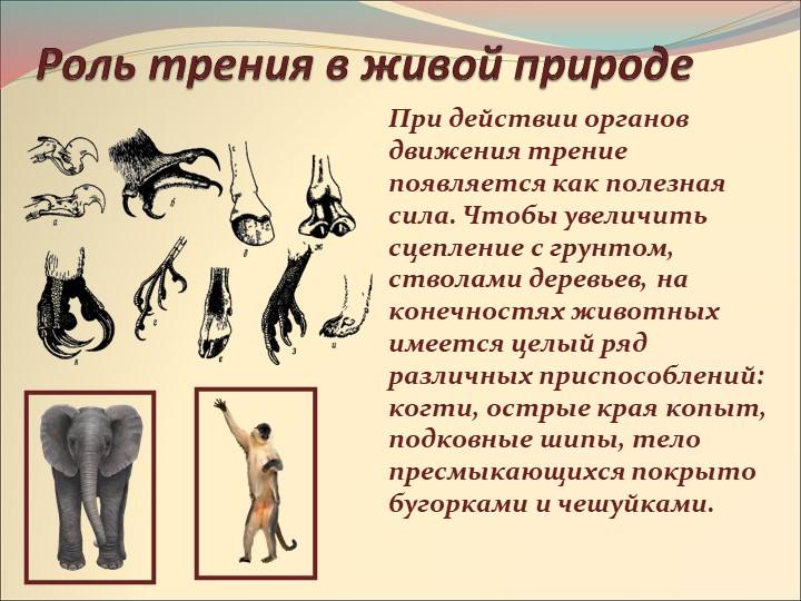 Роль трения в живой природеПри действии органов движения трение появляется ка...