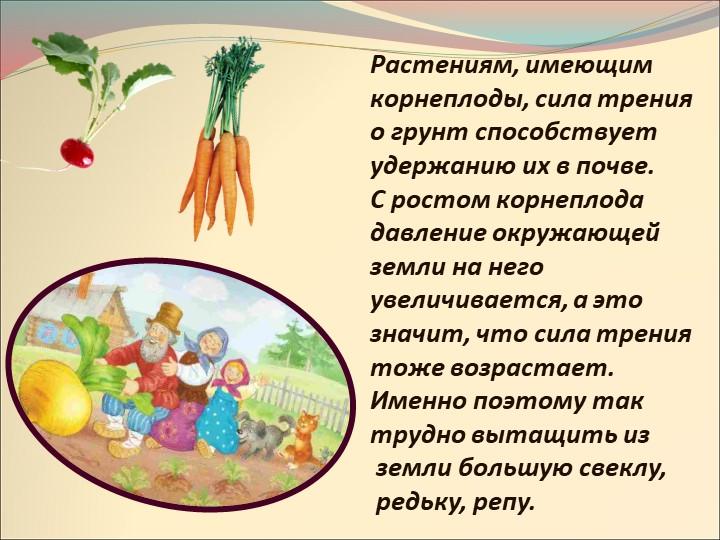 Растениям, имеющим корнеплоды, сила трения о грунт способствует удержанию их...