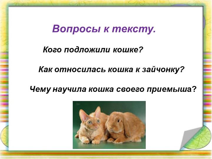Вопросы к тексту.             Кого подложили кошке?...