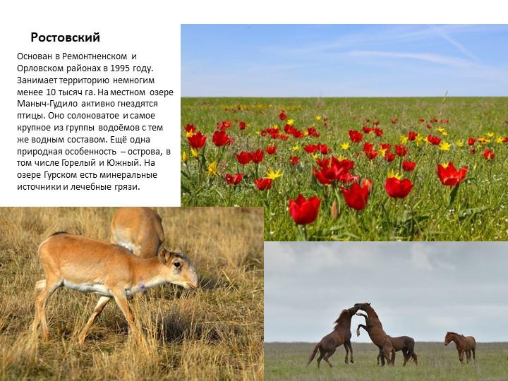 РостовскийОснован в Ремонтненском и Орловском районах в 1995 году. Занимает т...
