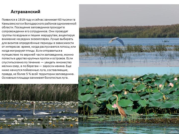 АстраханскийПоявился в 1919 году и сейчас занимает 63 тысячи га Камызякского...