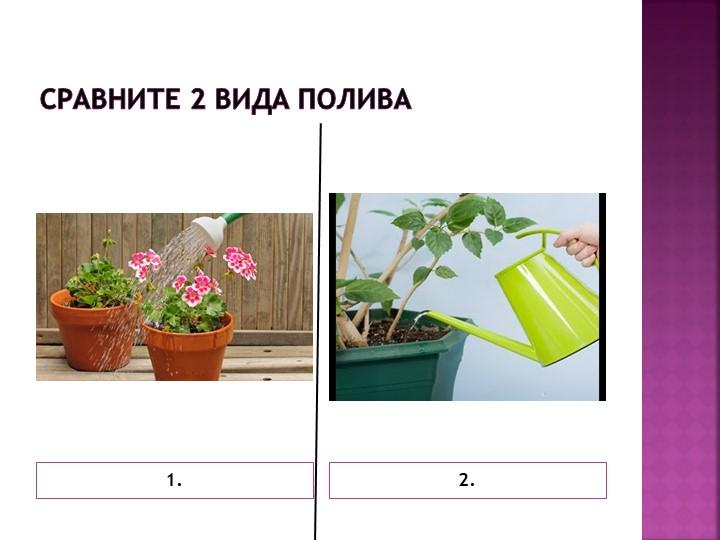 Сравните 2 вида полива1.2.