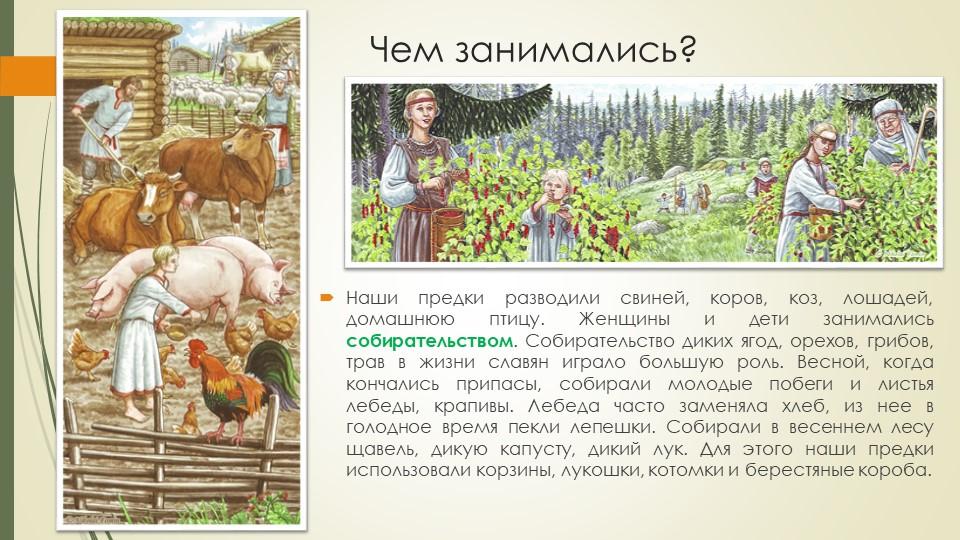 Чем занимались?Наши предки разводили свиней, коров, коз, лошадей, домашнюю пт...