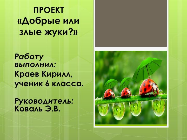 ПРОЕКТ«Добрые или злые жуки?»Работу выполнил:Краев Кирилл, ученик 6 кла...
