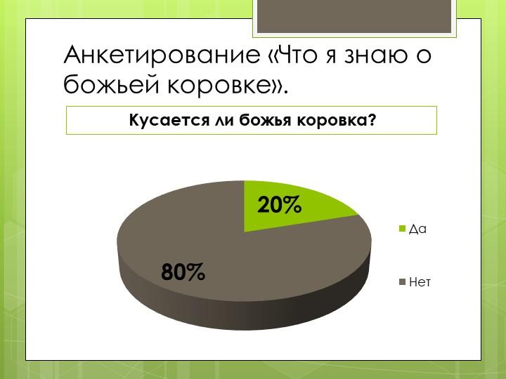 Анкетирование «Что я знаю о божьей коровке».Кусается ли божья коровка?