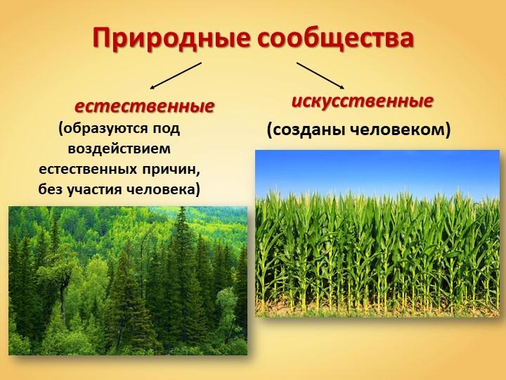 Природные сообщества            естественные    искусственные(образуются под...