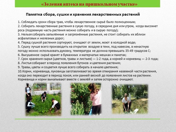 1. Соблюдать сроки сбора трав, чтобы лекарственное сырьё было полноценным;2....