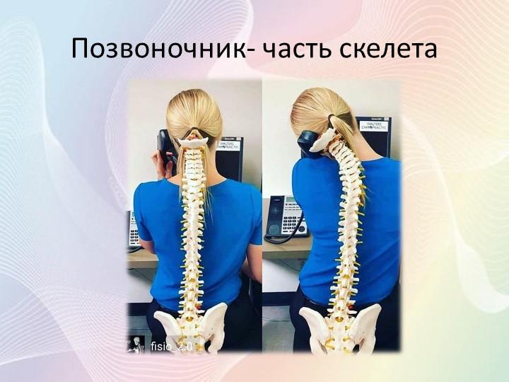 Позвоночник- часть скелета