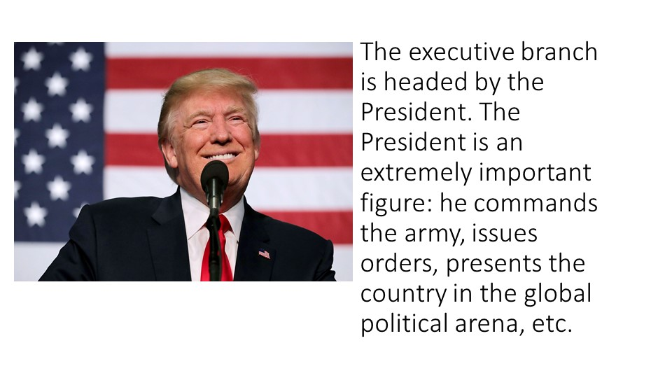 The executive branch is headed by the President. The President is an extremel...