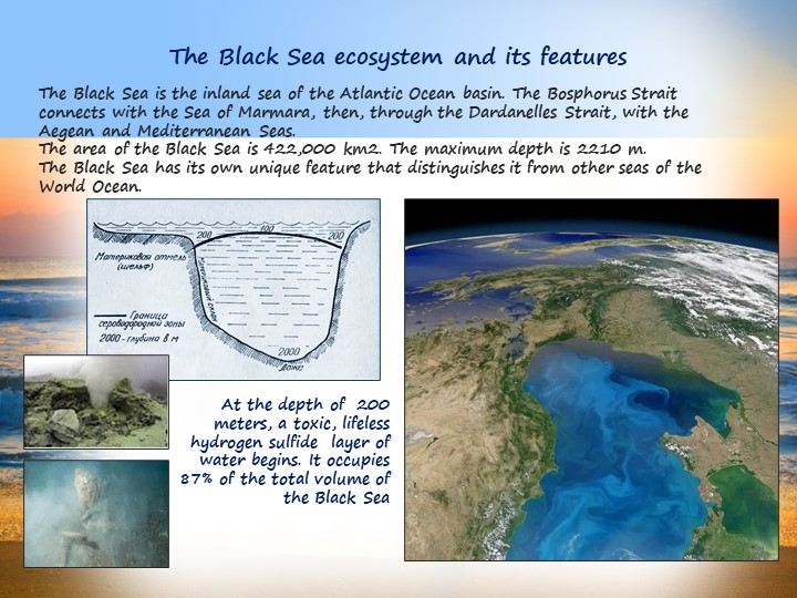 The Black Sea ecosystem and its featuresThe Black Sea is the inland sea of th...