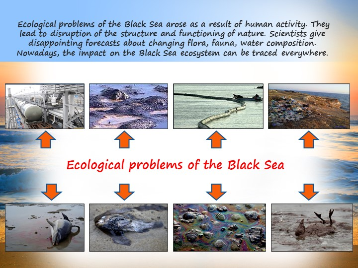 Ecological problems of the Black Sea arose as a result of human activity. Th...