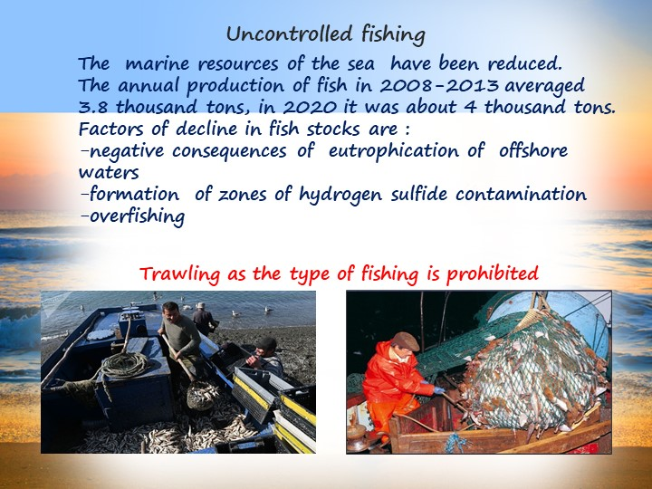 Uncontrolled fishingThe  marine resources of the sea  have been reduced.The...