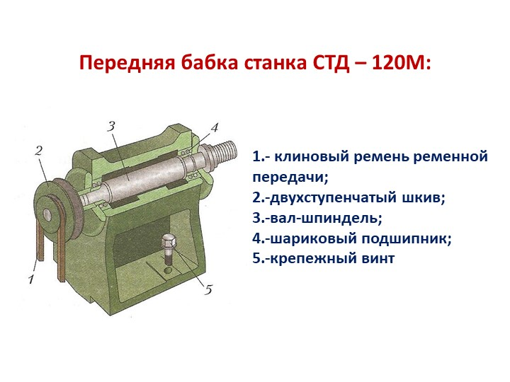Передняя бабка станка СТД – 120М:1.- клиновый ремень ременной передачи;2.-дв...