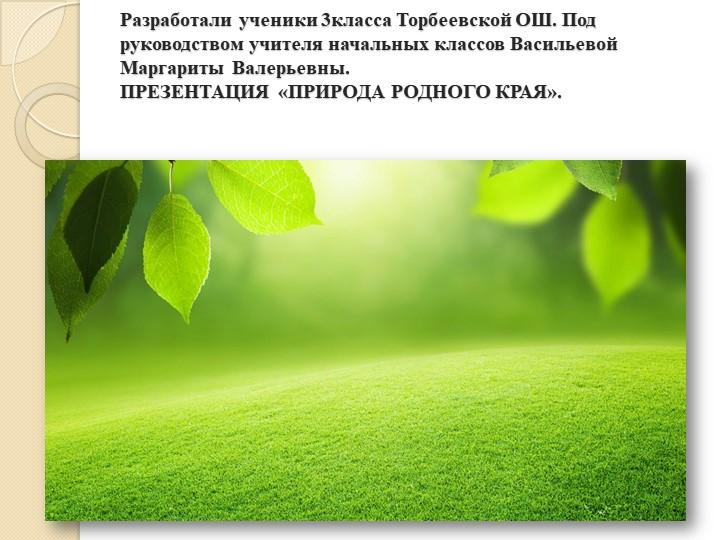 Разработали ученики 3класса Торбеевской ОШ. Под руководством учителя начальны...