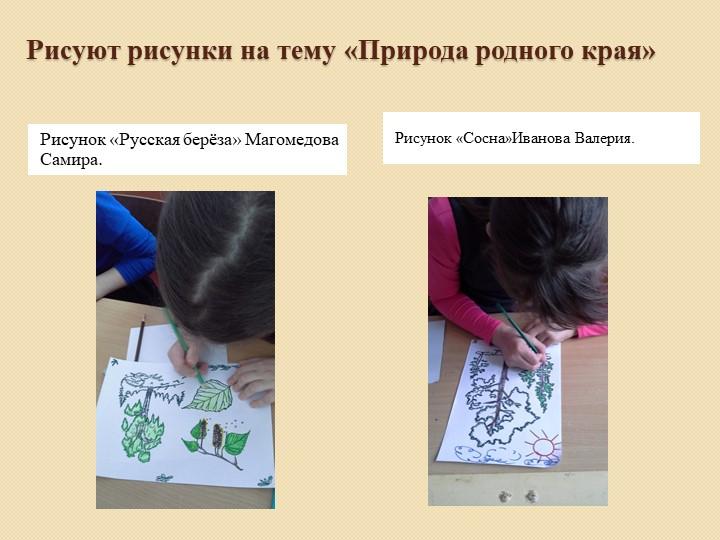 Рисуют рисунки на тему «Природа родного края»Рисунок «Русская берёза» Маг...