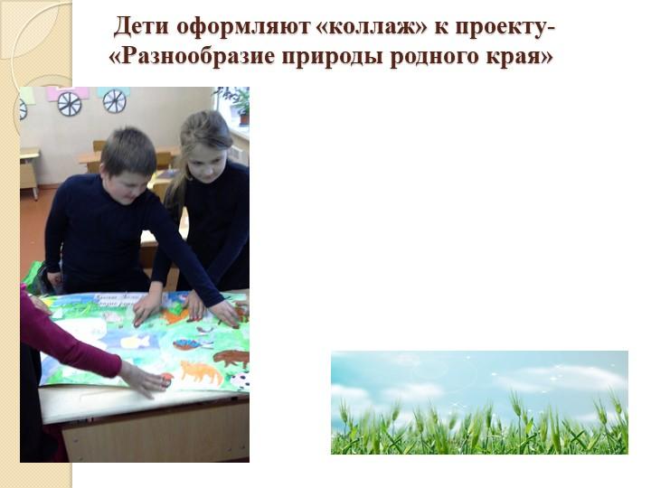 Дети оформляют «коллаж» к проекту-«Разнообразие природы родного края»