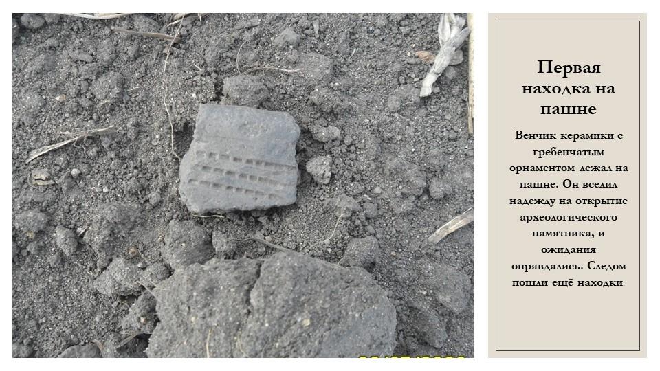 Первая находка на пашнеВенчик керамики с гребенчатым орнаментом лежал на пашн...