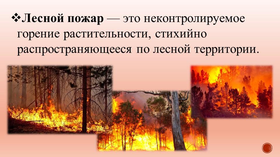 Лесной пожар — это неконтролируемое горение растительности, стихийно распрост...