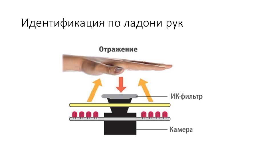 Идентификация по ладони рук