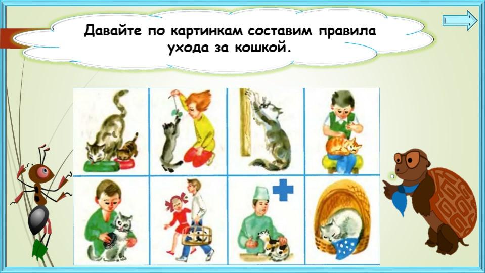 Давайте по картинкам составим правила ухода за кошкой.