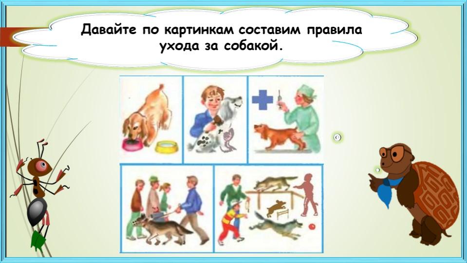 Давайте по картинкам составим правила ухода за собакой.